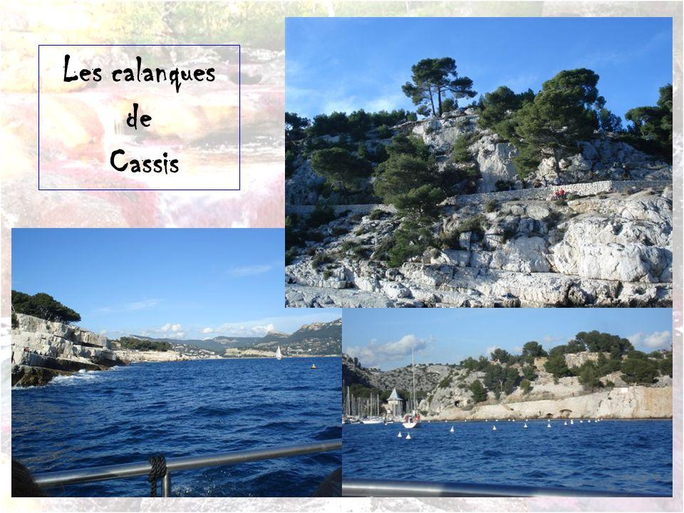 Le port de plaisance de Cassis.