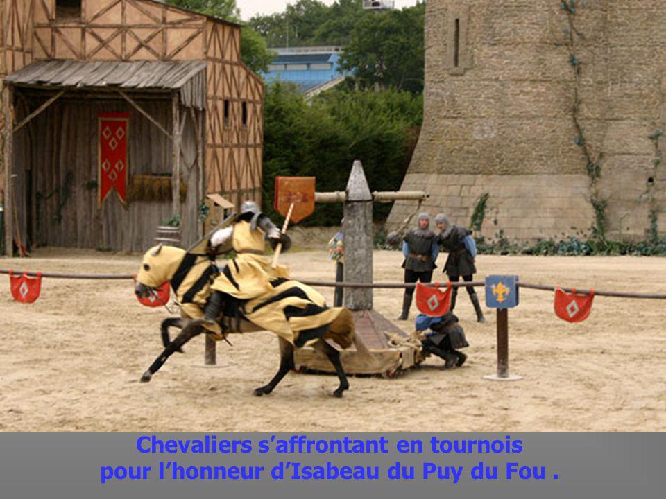 Guyon du Puy du Fou,parti à Orléans aux cotés de Jeanne dArc,revient sauver sa belle.