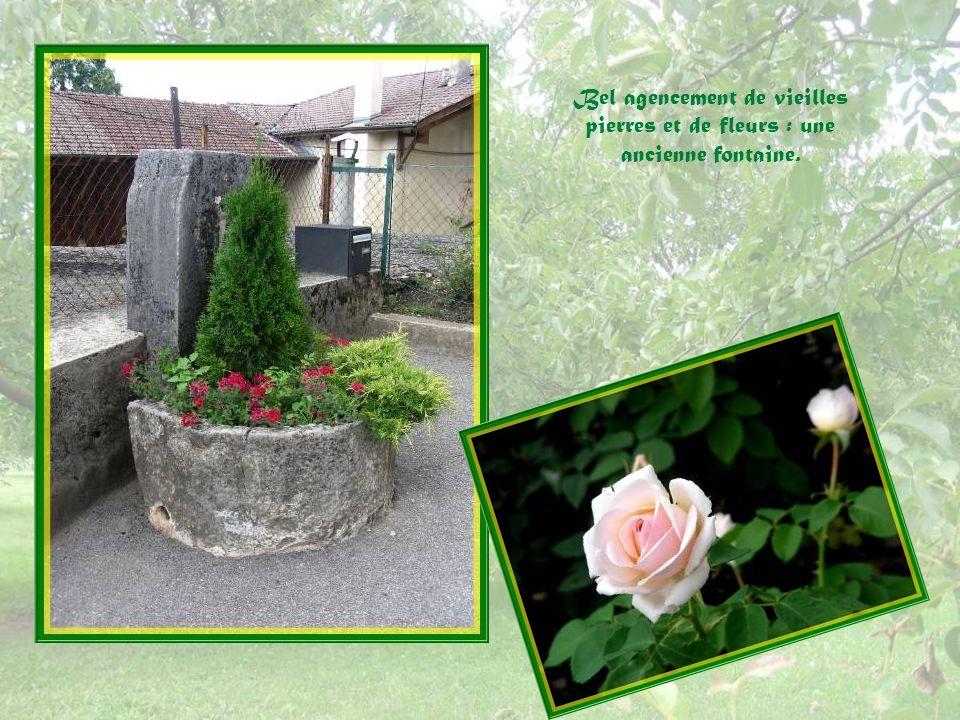 Ce qui frappe dans ce village cest son entretien parfait et la grande présence de fleurs cultivées avec amour et savoir- faire.