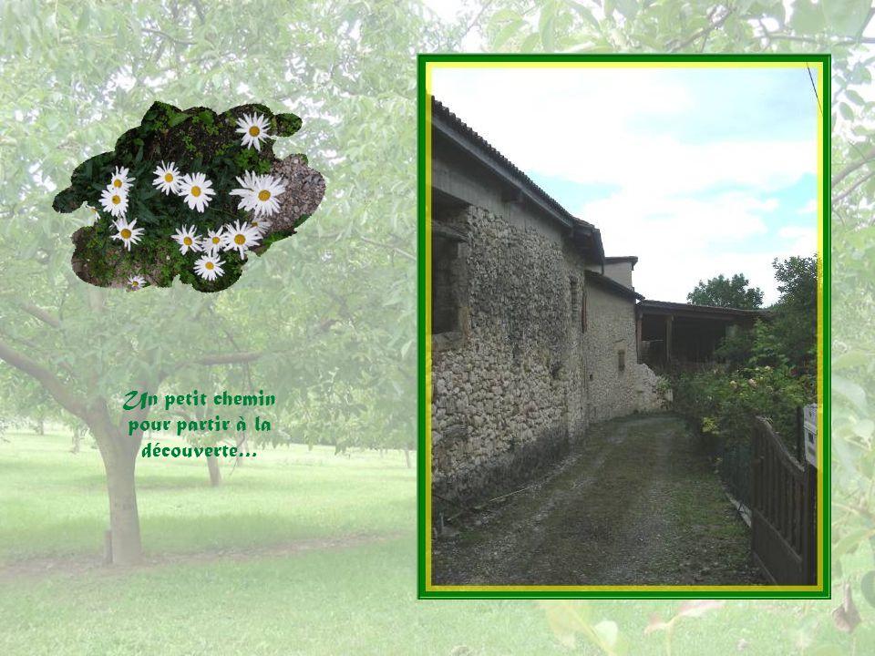 Bel agencement de vieilles pierres et de fleurs : une ancienne fontaine.