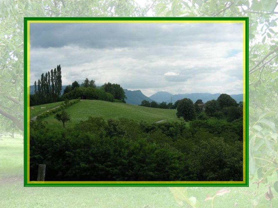 A travers les collines, ce petit chemin nous mène au cimetière.
