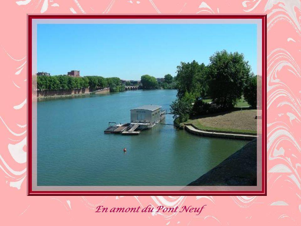 En amont du Pont Neuf