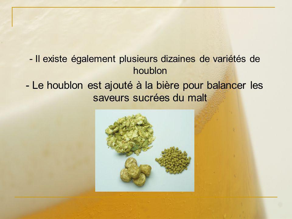 - Il existe également plusieurs dizaines de variétés de houblon - Le houblon est ajouté à la bière pour balancer les saveurs sucrées du malt