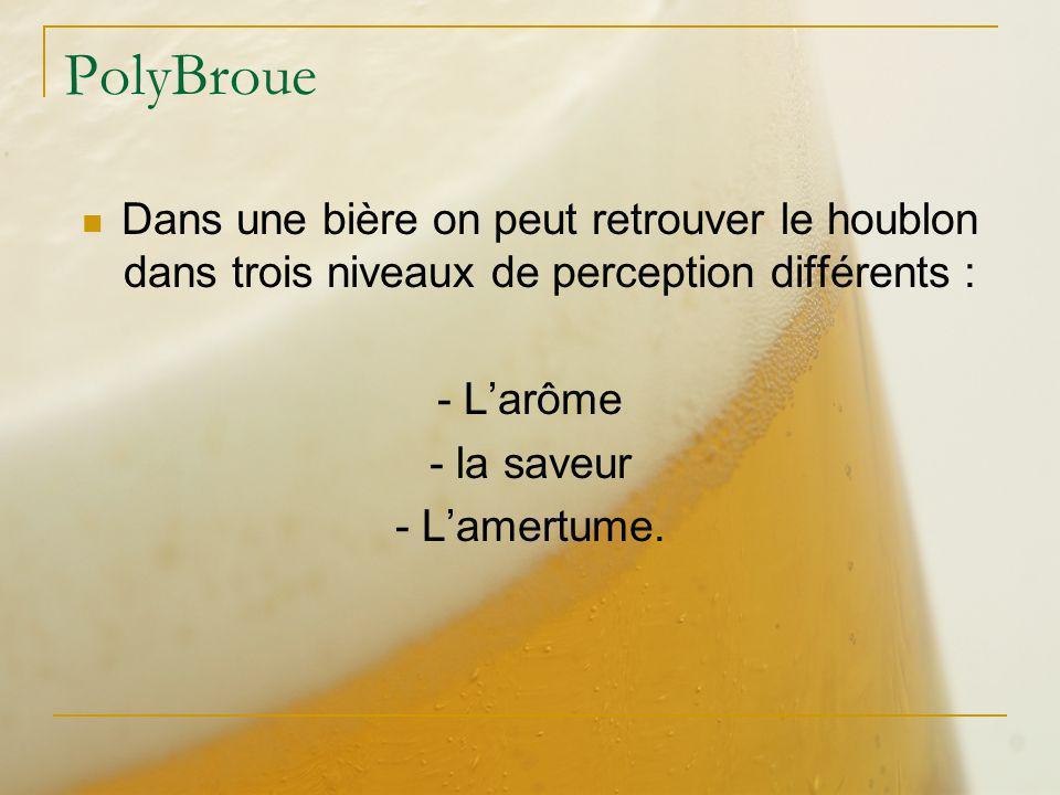 PolyBroue Dans une bière on peut retrouver le houblon dans trois niveaux de perception différents : - Larôme - la saveur - Lamertume.