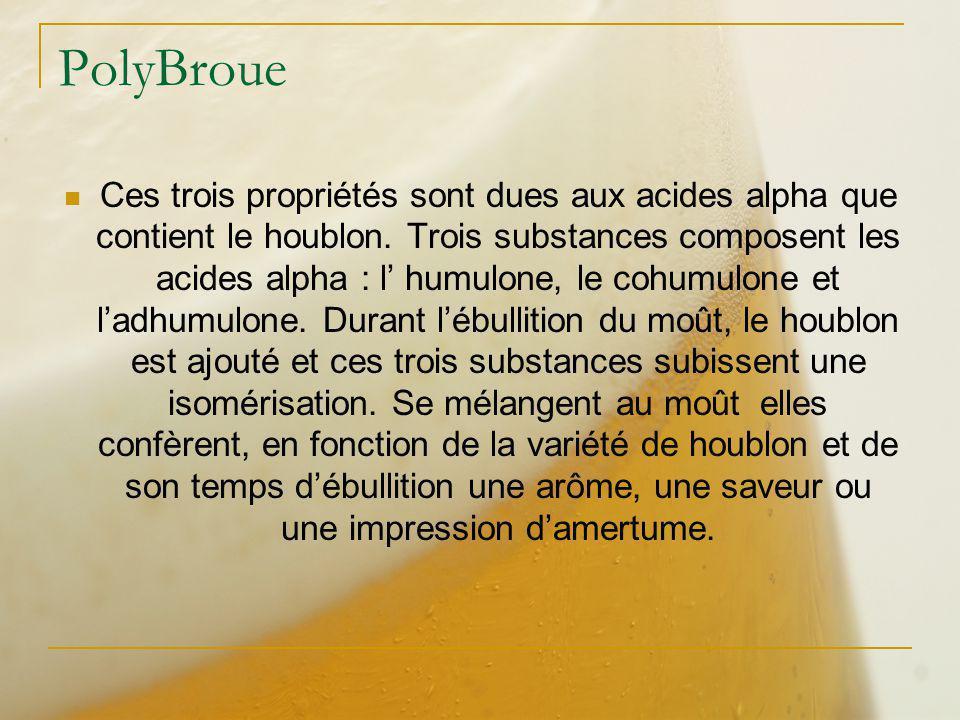 PolyBroue Ces trois propriétés sont dues aux acides alpha que contient le houblon. Trois substances composent les acides alpha : l humulone, le cohumu