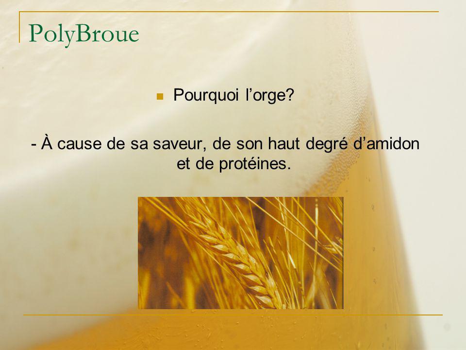 PolyBroue Pourquoi lorge? - À cause de sa saveur, de son haut degré damidon et de protéines.