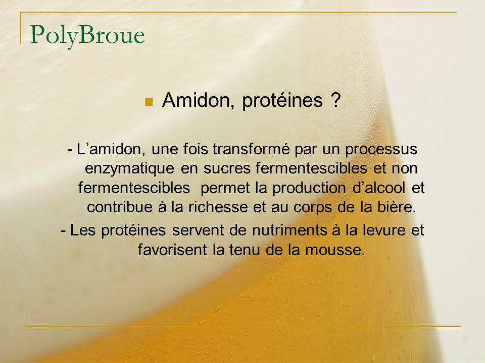 PolyBroue Amidon, protéines ? - Lamidon, une fois transformé par un processus enzymatique en sucres fermentescibles et non fermentescibles permet la p