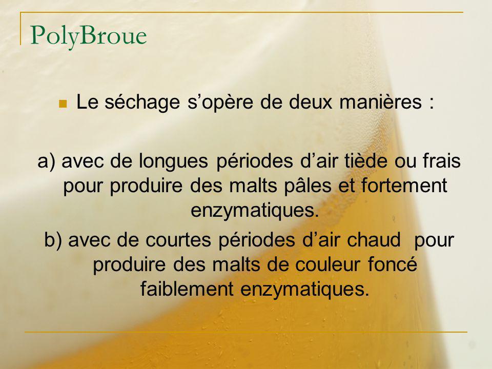 PolyBroue Le séchage sopère de deux manières : a) avec de longues périodes dair tiède ou frais pour produire des malts pâles et fortement enzymatiques