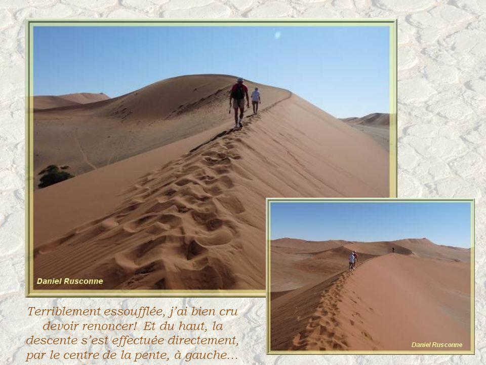 Cest une expérience inoubliable. Larête est dune finesse assez impressionnante.