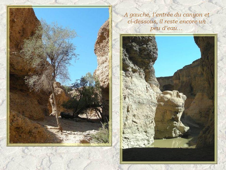 Non loin, un autre site très visité : le Canyon de Sesriem.
