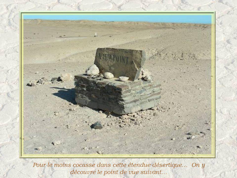 Le Parc National Namib-Naukluft est le 4 e plus grand au monde.