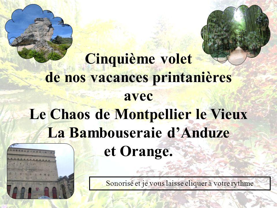 Cinquième volet de nos vacances printanières avec Le Chaos de Montpellier le Vieux La Bambouseraie dAnduze et Orange.