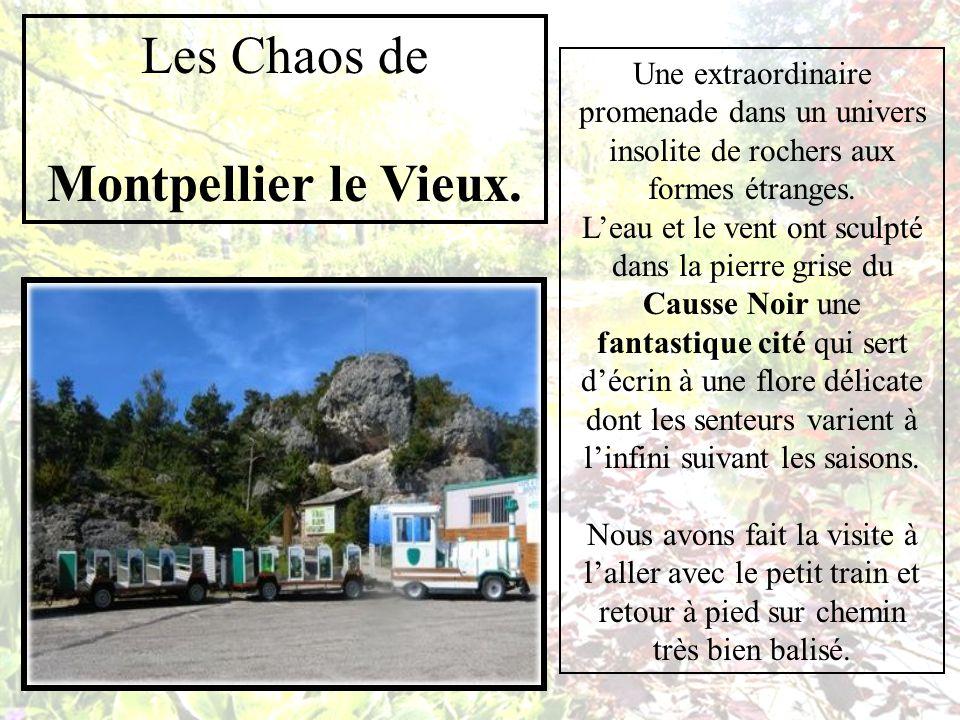 Les Chaos de Montpellier le Vieux.