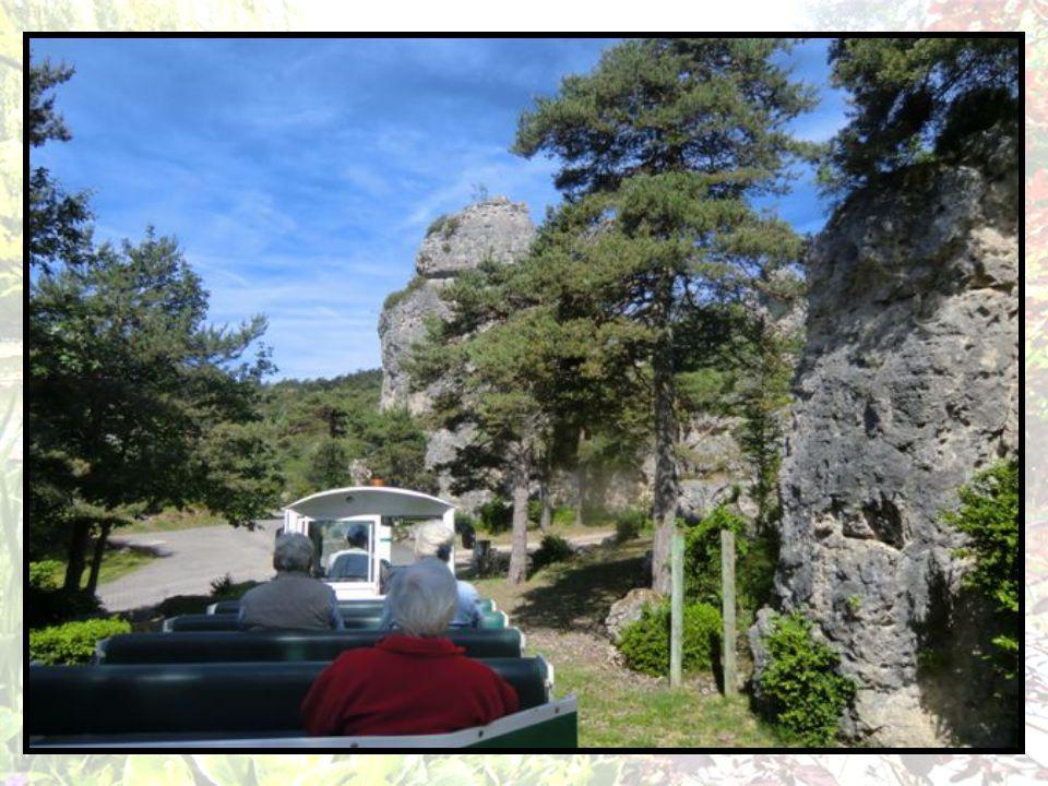 Les Chaos de Montpellier le Vieux. Une extraordinaire promenade dans un univers insolite de rochers aux formes étranges. Leau et le vent ont sculpté d