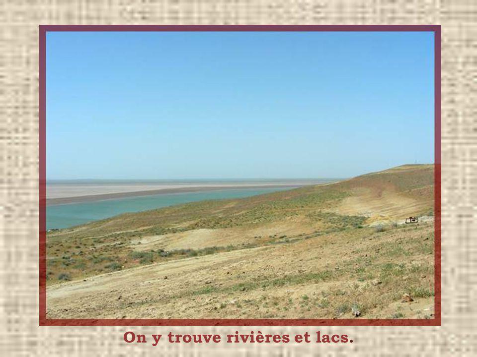 Le désert du Kyzyl Koum (sable rouge), sétend sur 300 000 km2, au Kazakhstan et en Ouzbékistan. Ce désert nest pas fait seulement de sable. Il est rec