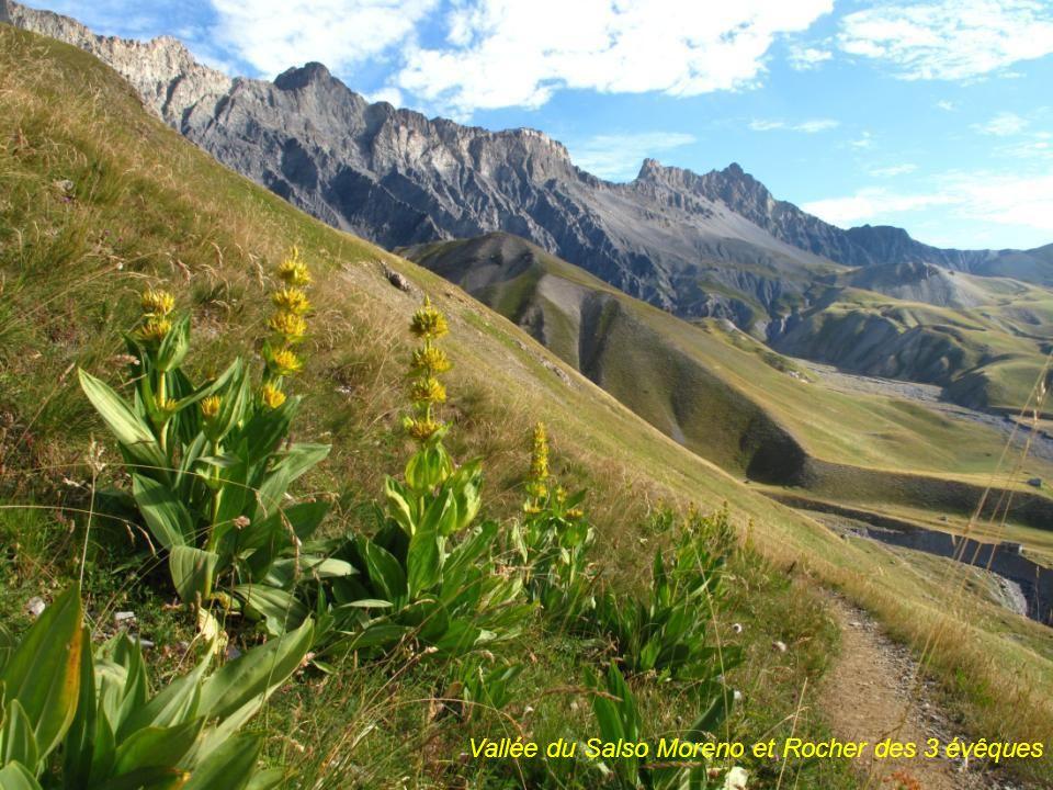 Mercantour GR5 : Panorama près du Col des Fourches (2261m) (route du col de la Bonette -2802m-) vue vers lEst, vallée et dolines du Salso Moreno