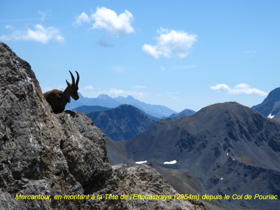 Mercantour, Vue du Col de Pouriac (2506m) sur Le Rocher des 3 évêques à gauche (2868m) et la Tête de lEnchastraye, sommet arrondi à 2954m