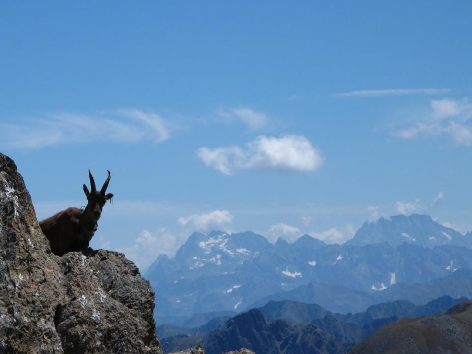 Mercantour, en montant à la Tête de lEnchastraye (2954m) depuis le Col de Pouriac