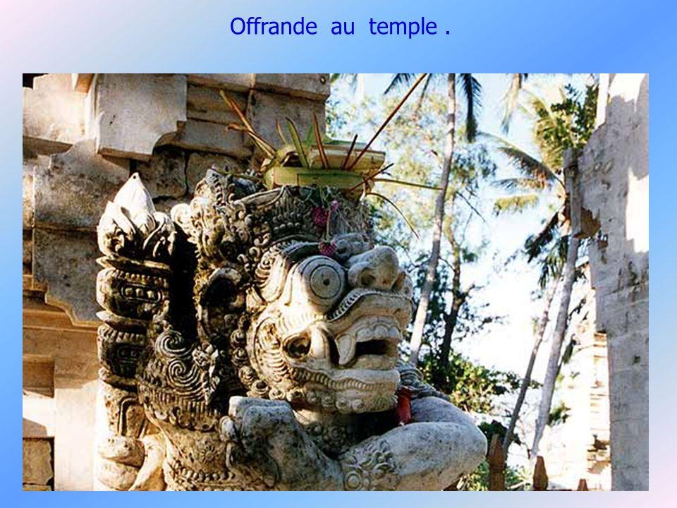 La vie des Balinais est faite doffrandes de toutes sortes,quotidiennes ou cérémonielles pour honorer les diverses divinités.