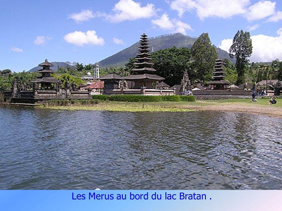 Le Pura Ulun Danau dédié à la Déesse Dewi Danu.