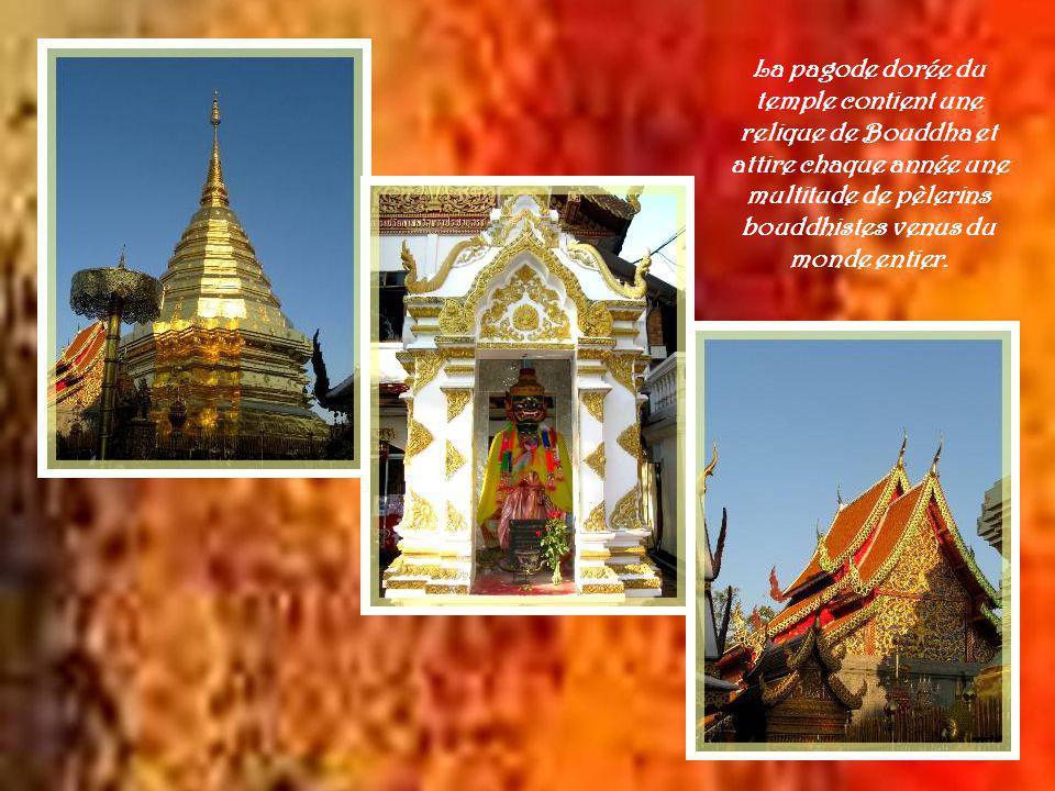 Il serait impensable de se rendre à Chiang Maï sans aller visiter le Wat Phrathat Doï Suthep, ce temple qui, à 15 km et perché sur une plate-forme de 1000 m de hauteur, est visible de la ville avec en toile de fond, une montagne boisée, le Doï Suthep.