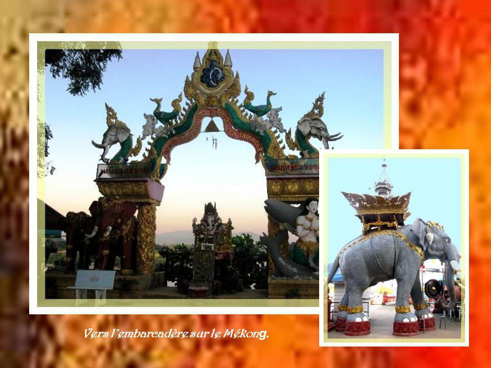 Coincée entre les frontières du Laos et du Myanmar, cette région de la Thaïlande a déjà été le centre de production de lopium pour le monde entier.