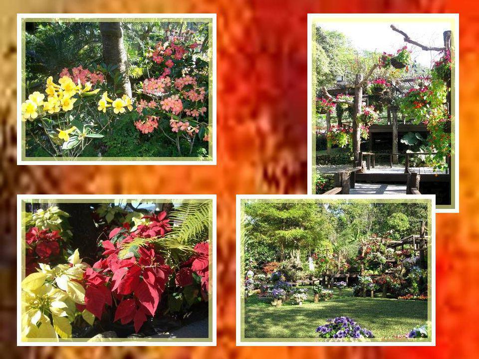 Lentrée du jardin botanique.