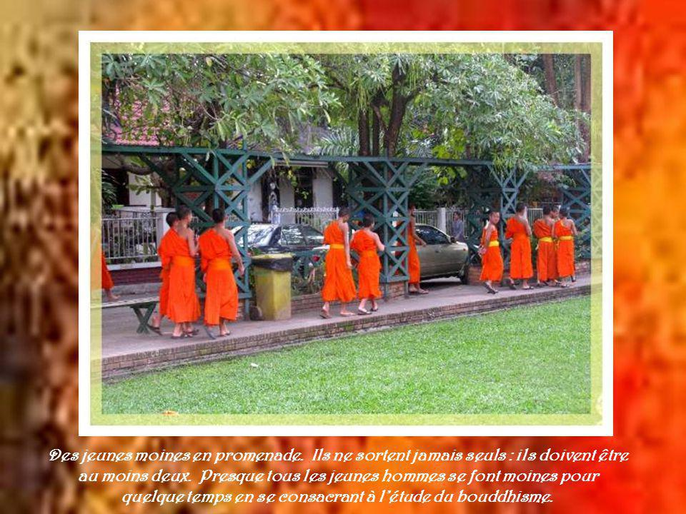 Ce moine est aussi immobile que le bouddha devant lequel il se recueille…