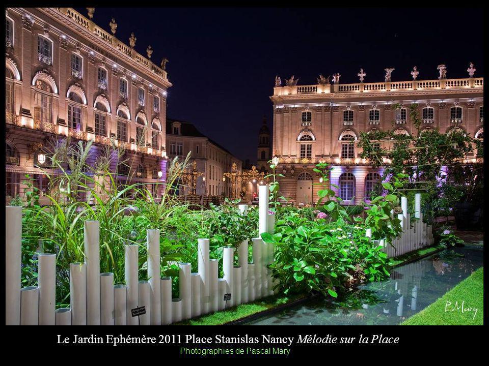 Le Jardin Ephémère 2011 Place Stanislas Nancy Mélodie sur la Place Photographies de Pascal Mary