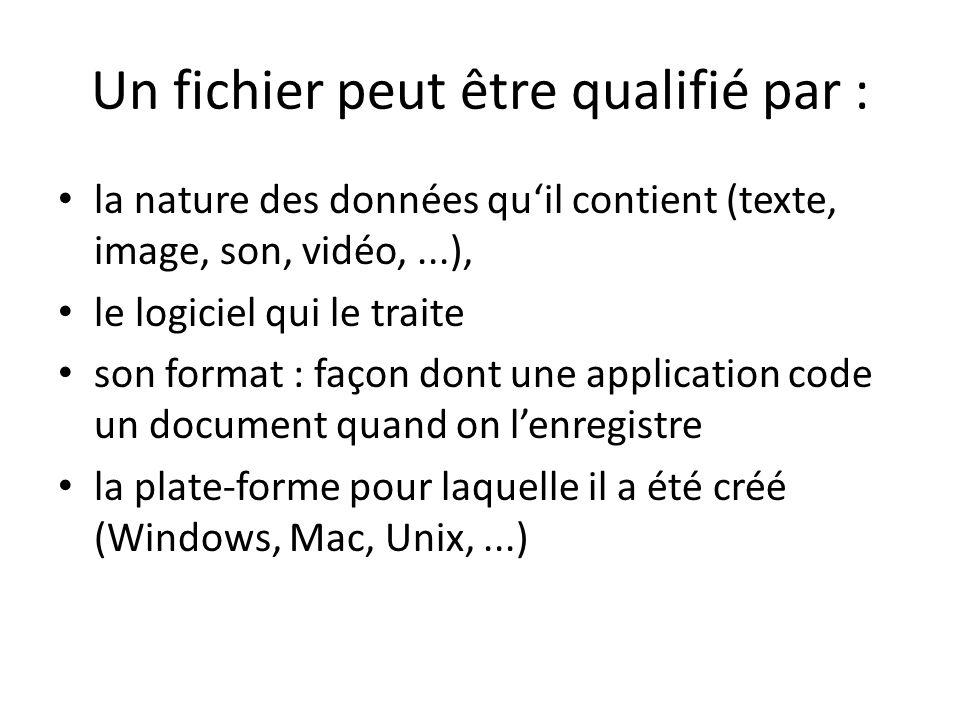 Un fichier peut être qualifié par : la nature des données quil contient (texte, image, son, vidéo,...), le logiciel qui le traite son format : façon dont une application code un document quand on lenregistre la plate-forme pour laquelle il a été créé (Windows, Mac, Unix,...)