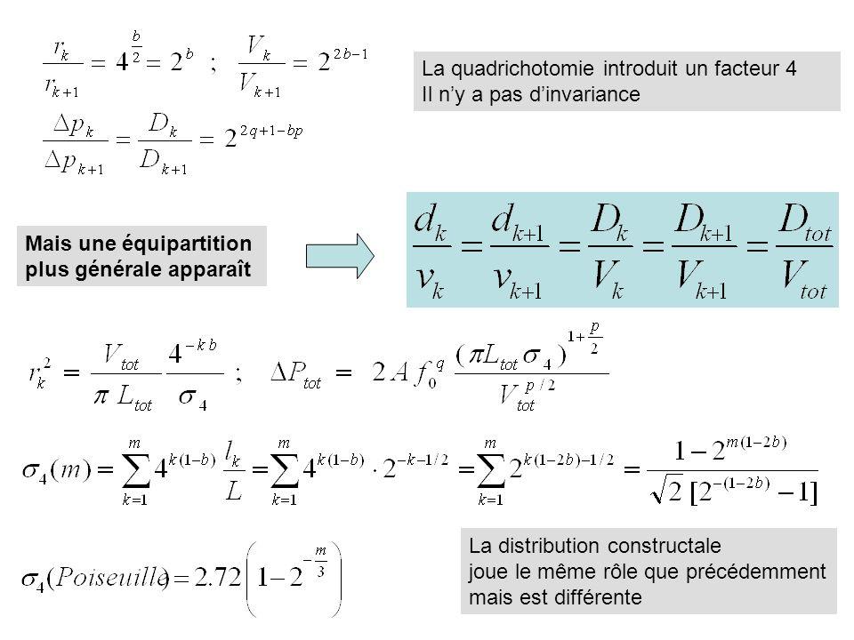 La quadrichotomie introduit un facteur 4 Il ny a pas dinvariance Mais une équipartition plus générale apparaît La distribution constructale joue le même rôle que précédemment mais est différente