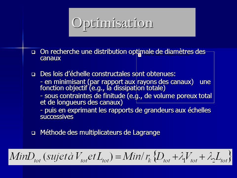 Optimisation On recherche une distribution optimale de diamètres des canaux On recherche une distribution optimale de diamètres des canaux Des lois déchelle constructales sont obtenues: Des lois déchelle constructales sont obtenues: - en minimisant (par rapport aux rayons des canaux) une fonction objectif (e.g., la dissipation totale) - sous contraintes de finitude (e.g., de volume poreux total et de longueurs des canaux) - puis en exprimant les rapports de grandeurs aux échelles successives Méthode des multiplicateurs de Lagrange Méthode des multiplicateurs de Lagrange