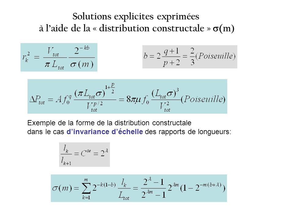 La distribution constructale (m) Toutes les grandeurs caractérisant la structure optimisée sexpriment à laide de cette distribution adimensionnelle Toutes les grandeurs caractérisant la structure optimisée sexpriment à laide de cette distribution adimensionnelle Elle regroupe tous les termes qui dépendent de lindice déchelle k Elle regroupe tous les termes qui dépendent de lindice déchelle k Leur sommation (série géométrique) conduit à une fonction discrète (distribution) du nombre total déchelles m Leur sommation (série géométrique) conduit à une fonction discrète (distribution) du nombre total déchelles m La forme de cette distribution est caractéristique de la topologie de larborescence (nombre de divisions et facteurs déchelle des longueurs) mais les exposants contiennent les exposants de la loi découlement La forme de cette distribution est caractéristique de la topologie de larborescence (nombre de divisions et facteurs déchelle des longueurs) mais les exposants contiennent les exposants de la loi découlement