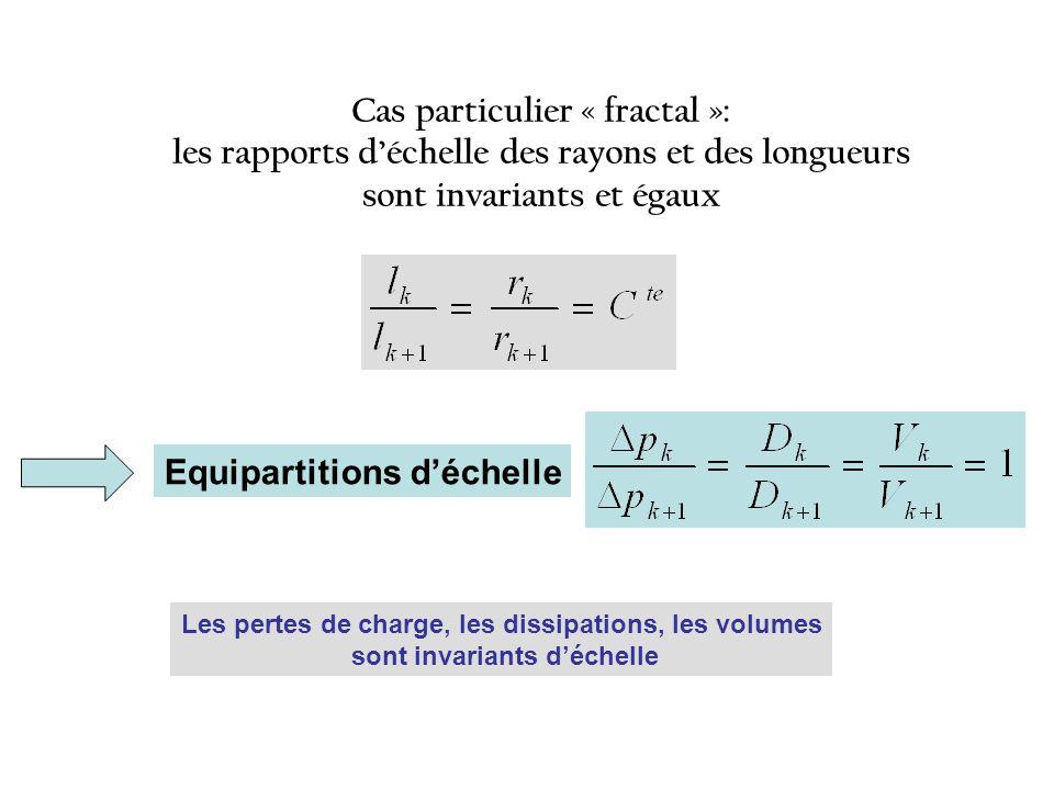 Equipartitions déchelle Cas particulier « fractal »: les rapports déchelle des rayons et des longueurs sont invariants et égaux Les pertes de charge, les dissipations, les volumes sont invariants déchelle