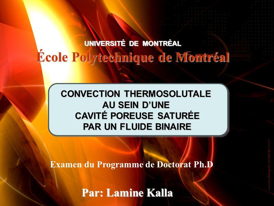 Examen du Programme de Doctorat Ph.D Par: Lamine Kalla UNIVERSITÉ DE MONTRÉAL École Polytechnique de Montréal CONVECTION THERMOSOLUTALE AU SEIN DUNE C