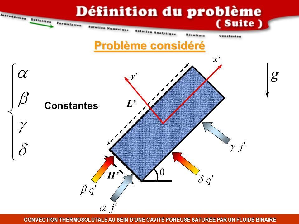 Problème considéré CONVECTION THERMOSOLUTALE AU SEIN DUNE CAVITÉ POREUSE SATURÉE PAR UN FLUIDE BINAIRE L H g x y Constantes