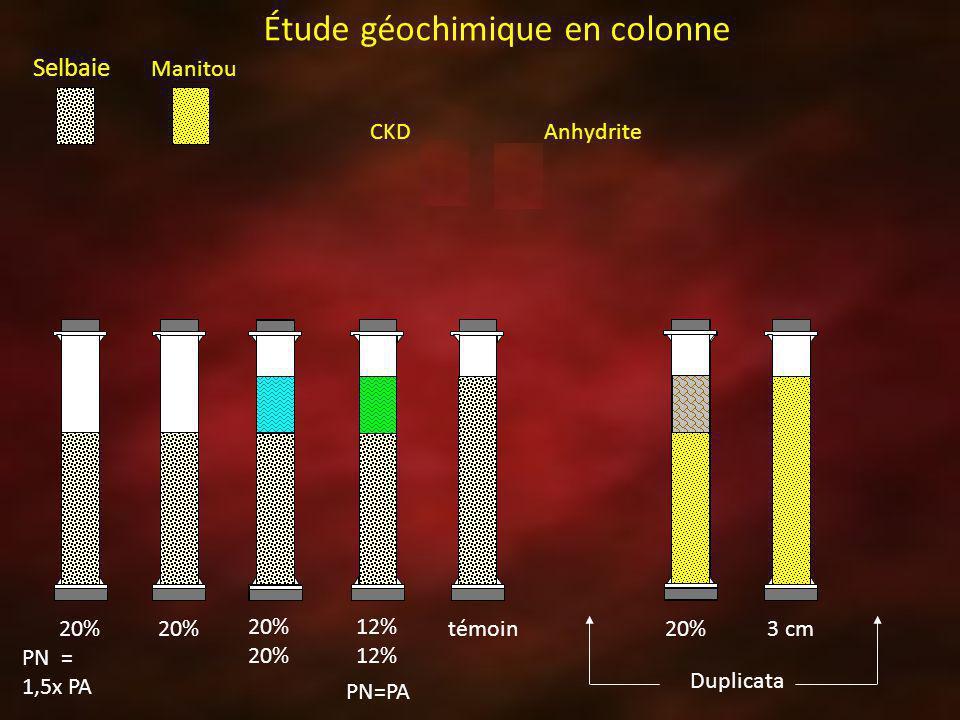 Selbaie Manitou Anhydrite CKD 20% PN = 1,5x PA 20% 12% témoin Duplicata 20%3 cm Étude géochimique en colonne PN=PA