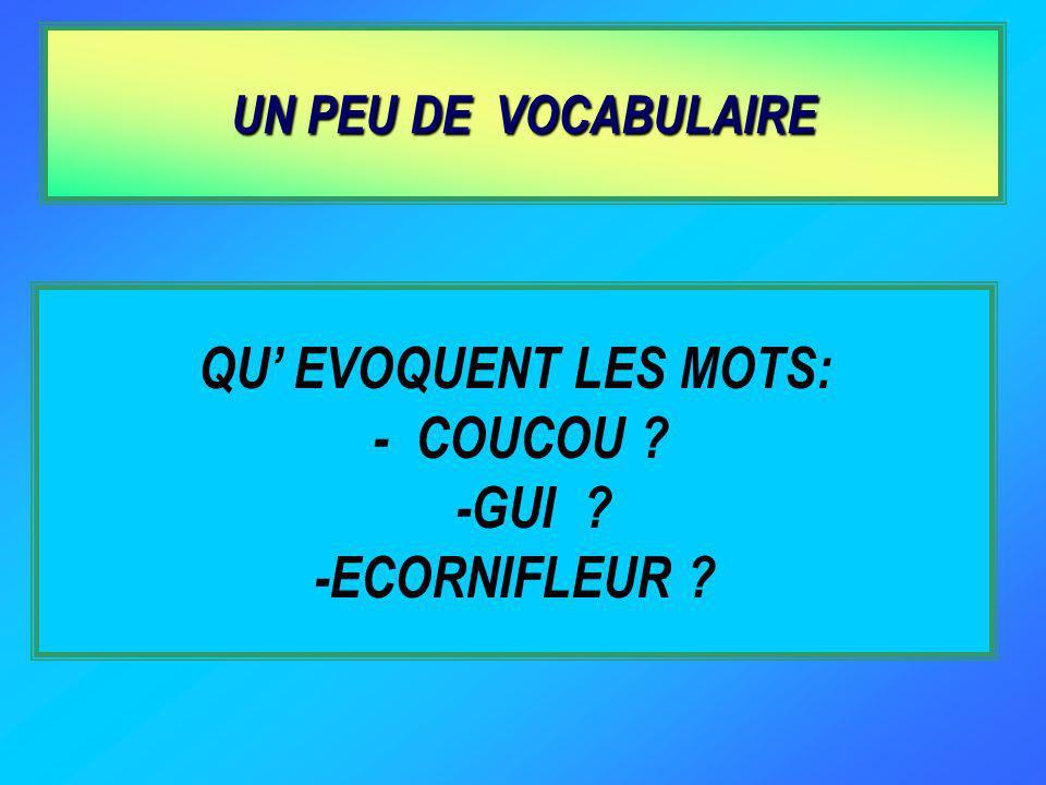 QU EVOQUENT LES MOTS: - COUCOU ? -GUI ? -ECORNIFLEUR ? UN PEU DE VOCABULAIRE