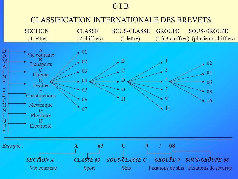 La Classification Internationale des Brevets : la clé universelle permettant daccéder aux informations contenues dans les brevets des principaux pays