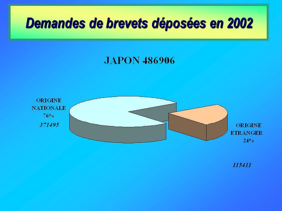 Demandes de brevets déposées en 2002 371495 115411