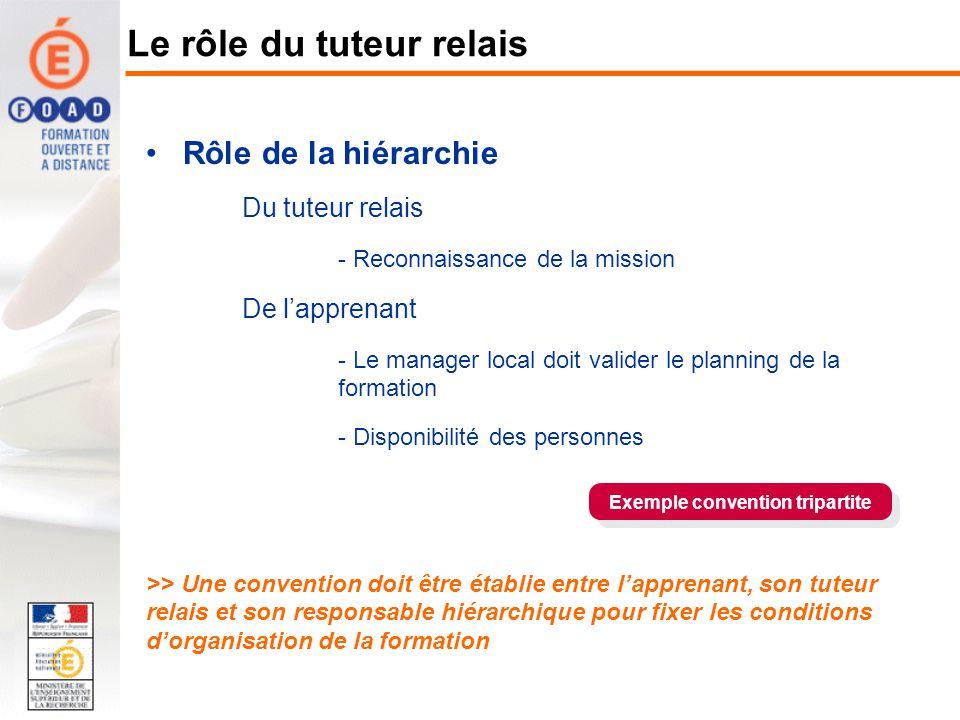 Rôle de la hiérarchie Du tuteur relais - Reconnaissance de la mission De lapprenant - Le manager local doit valider le planning de la formation - Disp