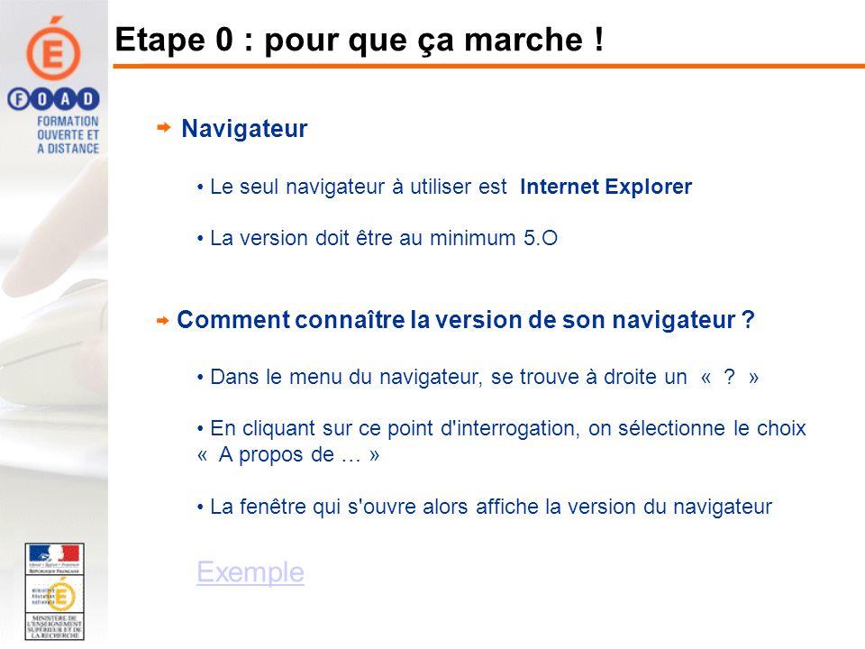 Navigateur Le seul navigateur à utiliser est Internet Explorer La version doit être au minimum 5.O Comment connaître la version de son navigateur ? Da