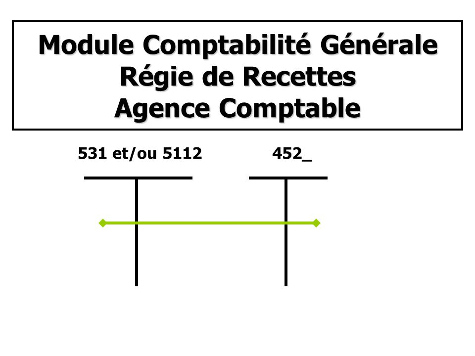 Module Comptabilité Générale Régie de Recettes Etablissement rattaché 47151545_513Cl.
