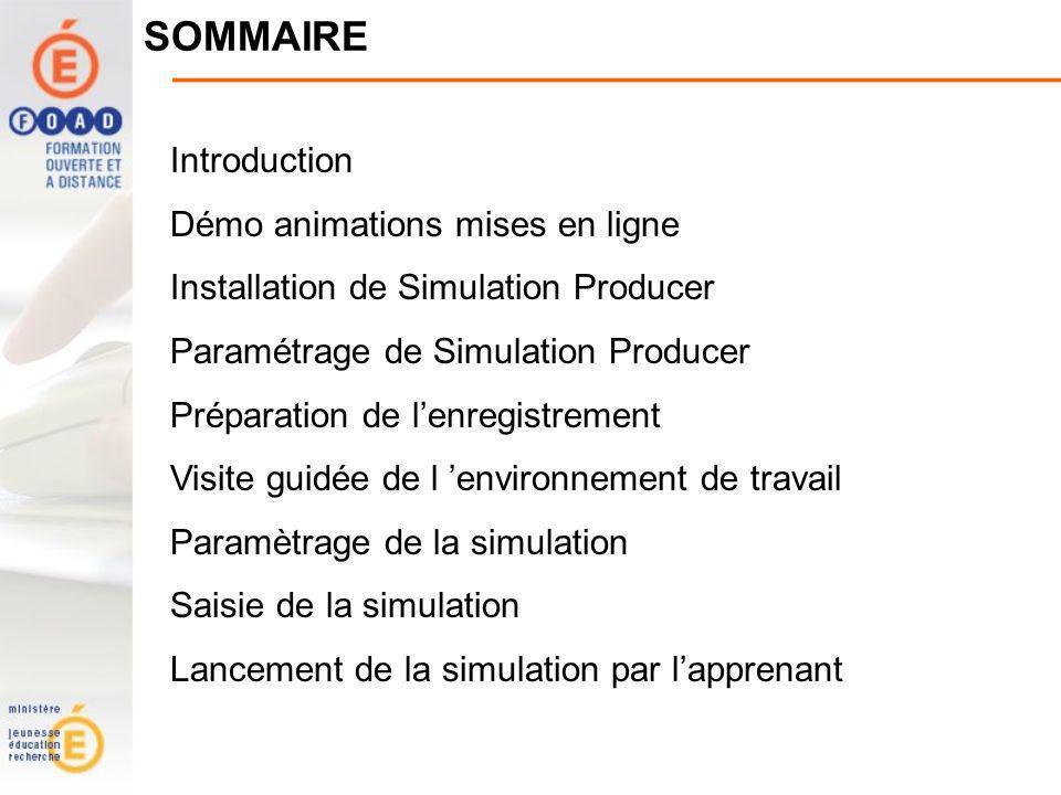 SOMMAIRE Introduction Démo animations mises en ligne Installation de Simulation Producer Paramétrage de Simulation Producer Préparation de lenregistrement Visite guidée de l environnement de travail Paramètrage de la simulation Saisie de la simulation Lancement de la simulation par lapprenant
