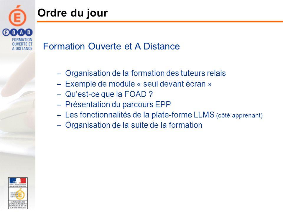Formation Ouverte et A Distance –Organisation de la formation des tuteurs relais Les acteurs du parcours EPP Le calendrier et les étapes de la formation –Exemple de module « seul devant écran » –Quest-ce que la FOAD .