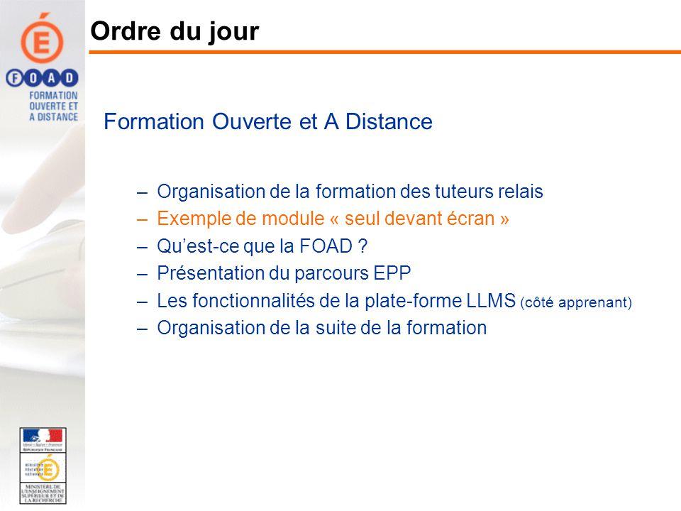 Formation Ouverte et A Distance –Organisation de la formation des tuteurs relais –Exemple de module « seul devant écran » –Quest-ce que la FOAD ? –Pré
