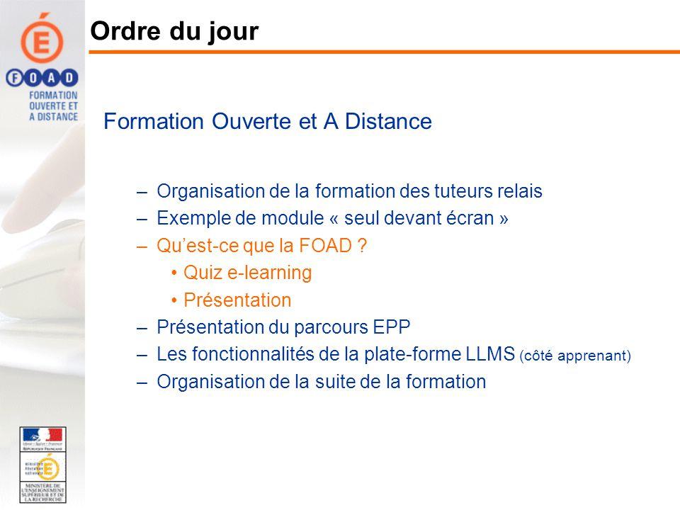 Formation Ouverte et A Distance –Organisation de la formation des tuteurs relais –Exemple de module « seul devant écran » –Quest-ce que la FOAD ? Quiz