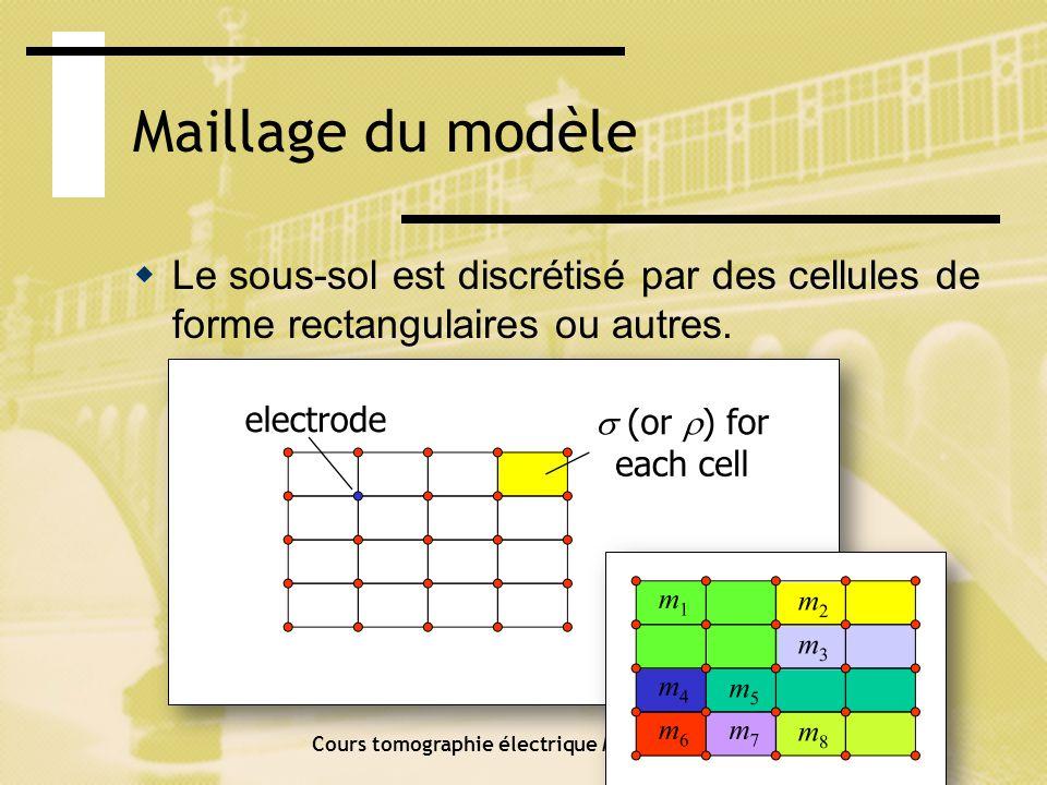 Maillage du modèle Le potentiel sur tout le domaine est calculé pour chaque position délectrode de courant.