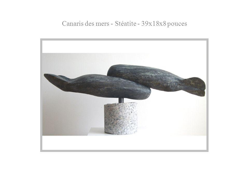 Canaris des mers - Stéatite - 39x18x8 pouces