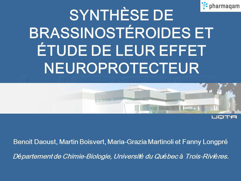 Plan de la présentation Maladie de Parkinson Hypothèse de travail Brassinostéroïdes (BRs) Synthèse Résultats in vitro neuroprotection